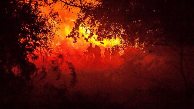 Noticias Sobre La Película O Que Arde De óliver Laxe Quincemil