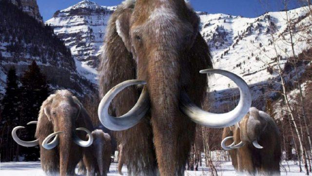 Manada de mamuts. https://revistaespejo.com