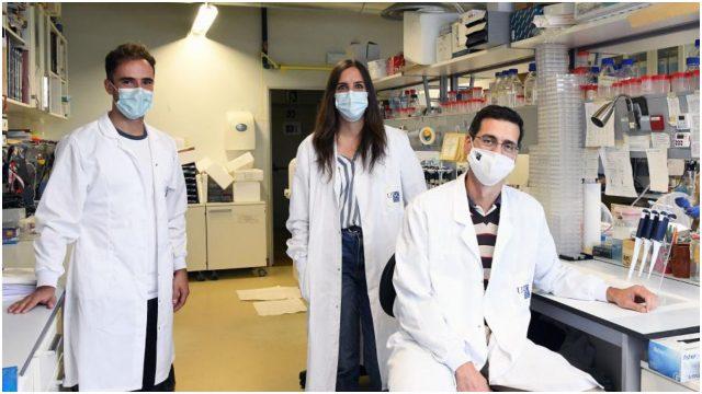 Rubén Nogueiras y los integrantes de su laboratorio de metabolismo molecular.
