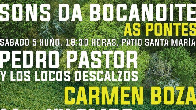 Parte del cartel del festival Sons da Bocanoite.