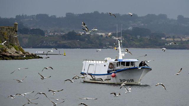 Un barco de flota artesanal en aguas gallegas.