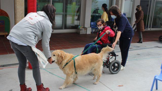 El Centro Juan María disfruta un día a la semana de terapia asistida por perros
