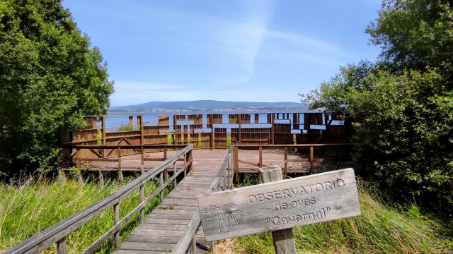 Observatorio de aves en O Grove
