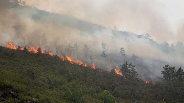 Incendio en O Courel (Lugo)