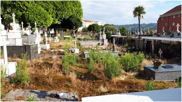 Aspecto del cementerio de titularidad municipal.