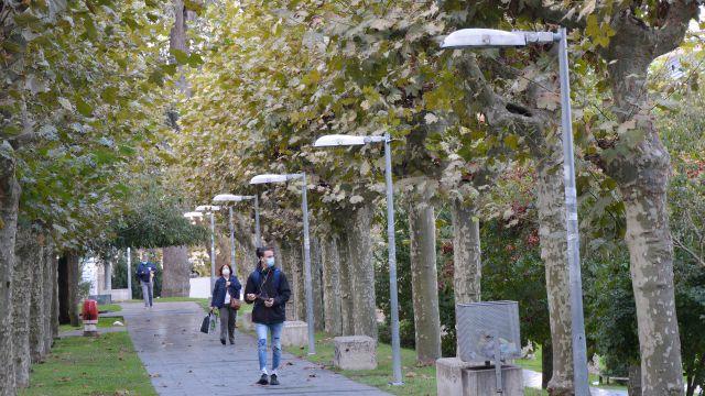 Farolas en el Camiño da Igualdade en el campus de Ourense