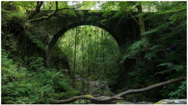 Puente de piedra sobre el río Sesín.