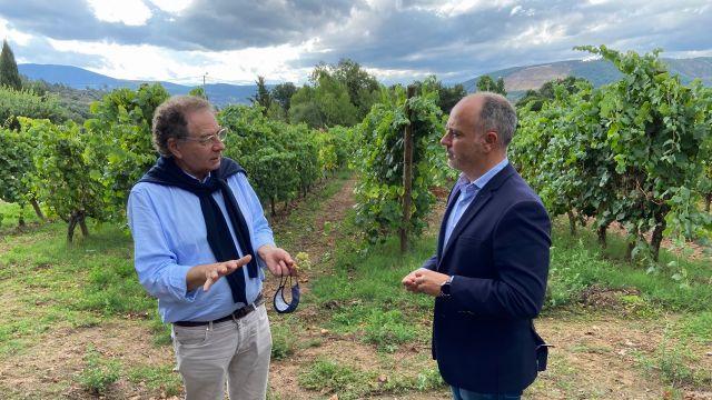 Roberto Verino y David Regades en los viñedos de la bodega Gargalo.