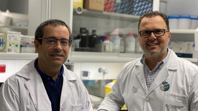 Los investigadores del IDIS Antonio Salas y Federico Martinón
